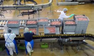 fabrika_main