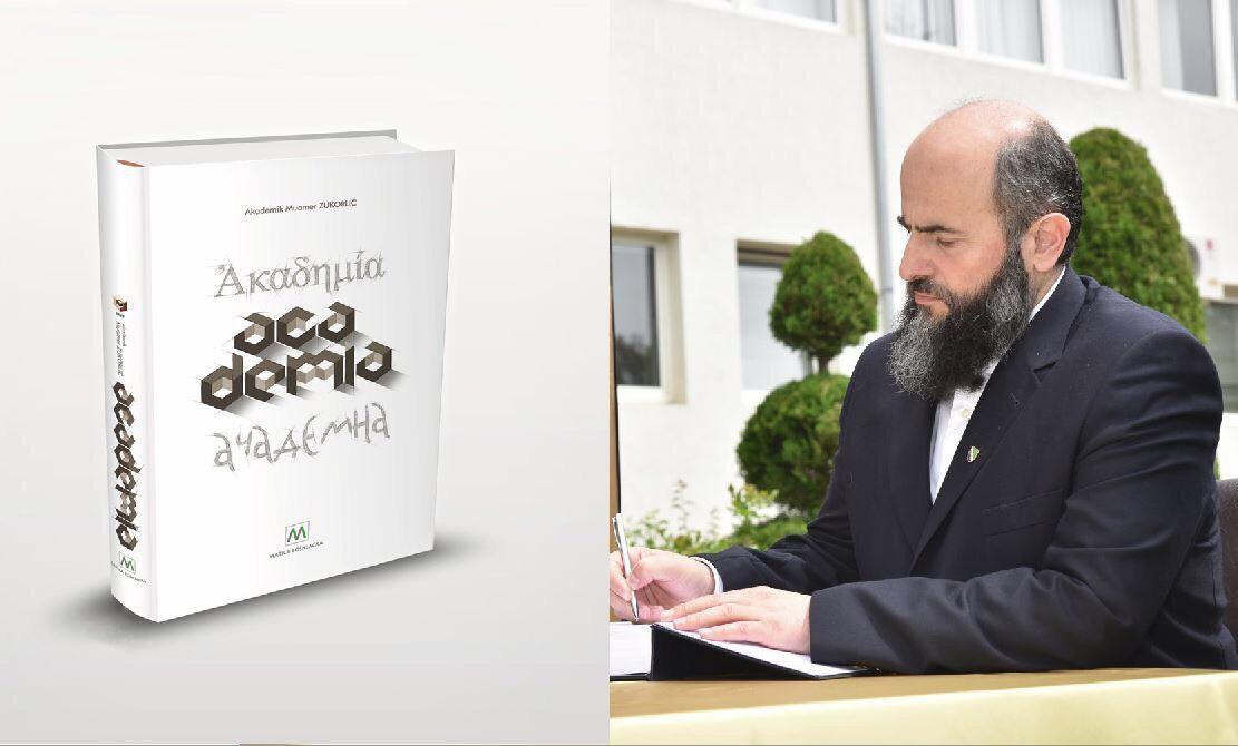 Slikovni rezultat za academia zukorlić